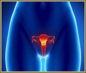 Prolapsed Uterus Symptoms